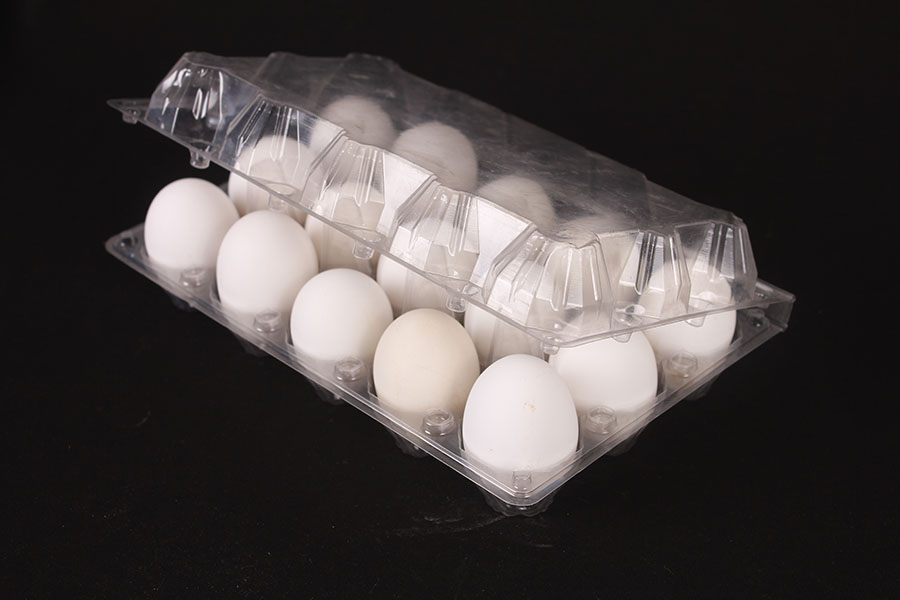 Clear 3x5 plastic egg tray